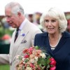http://www.celebdirtylaundry.com/2017/princess-diana-shamed-by-prince-charles-after-trying-to-seduce-him-back-from-camilla-parker-bowles/