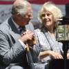 http://www.celebdirtylaundry.com/2017/camilla-parker-bowles-planning-huge-street-party-queen-elizabeth-concerned/