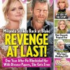 http://www.celebdirtylaundry.com/2016/miranda-lambert-pregnant-with-anderson-easts-baby-ultimate-revenge-on-blake-shelton/