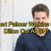 http://www.celebdirtylaundry.com/2017/general-hospital-spoilers-robert-palmer-watkins-fired-from-gh-dillon-out-heartbreak-for-kiki/