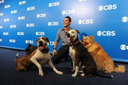 Dogs In The City Recap: Premiere 05/30/12