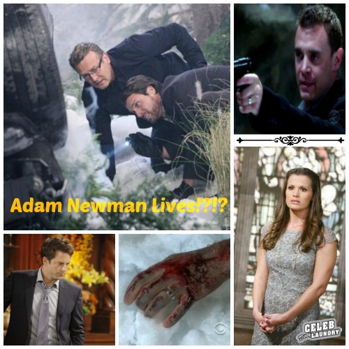 The Young and the Restless Spoilers: Adam Newman On His Way Home or Is Chelsea Losing Her Mind - Who Replaces Michael Muhney?