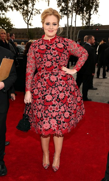 Adele-2013-Grammy-Awards-Red-Carpet-Arrival (350 x 582)