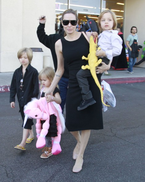 Angelina Jolie Worried Brad Pitt's Cheating With Models 1029