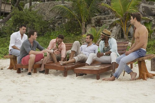 Bachelor In Paradise Spoilers: Five Andi Dorfman Guys Look For Love - Guide to Understanding The Show