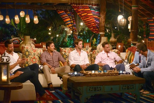Bachelor in Paradise Live Recap 8/18/14: Season 1 Episode 3 - Elise Mosca, Chris Bukowski and Danielle Ronco Leave