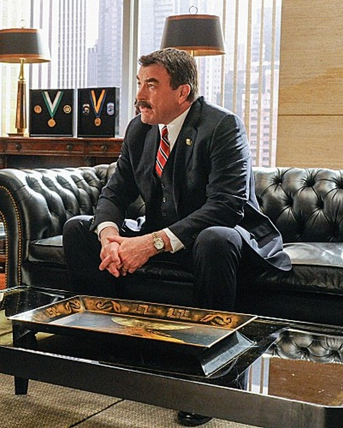 "Blue Bloods RECAP 3/8/13: Season 3 Episode 17 ""Protest Too Much"""