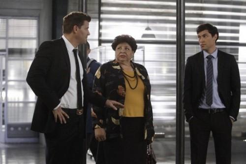 """Bones Season 8 Episode 12 """"The Corpse on the Canopy"""" Recap 01/21/13"""