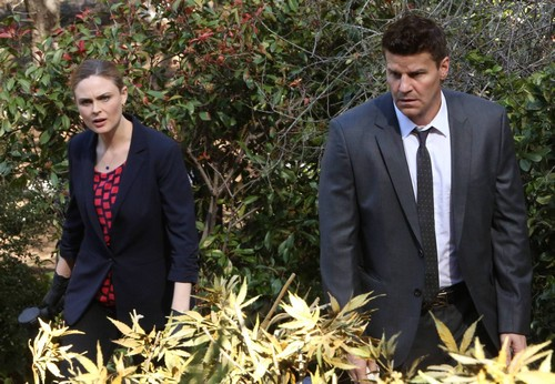 "Bones LIVE RECAP 4/7/14: Season 9 Episode 20 ""The High in the Low"""