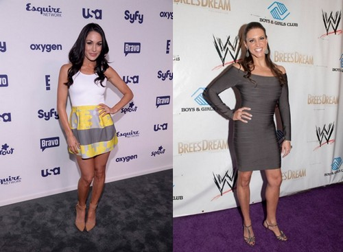 Brie Bella vs Stephanie McMahon SummerSlam 2014 - Two Potential Swerves!