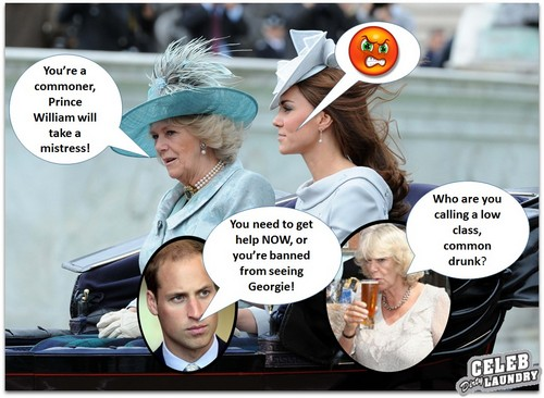 Prince William Attacks Camilla Parker-Bowles over Her Boozing: Bans Her from Prince George's Nursery