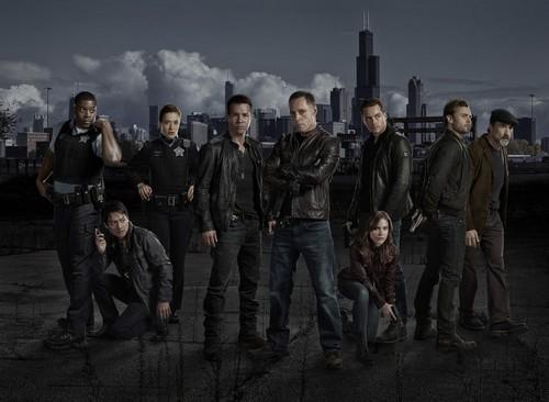 """Chicago PD RECAP 1/22/14: Season 1 Episode 3 """"Chin Check"""""""