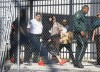Justin Bieber Is All Smiles As He Leaves Jail