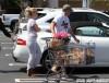 Britney Spears & David Lucado Grocery Shopping In Westlake