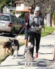 Exclusive... Miley Cyrus Walks Her Dog In Studio City