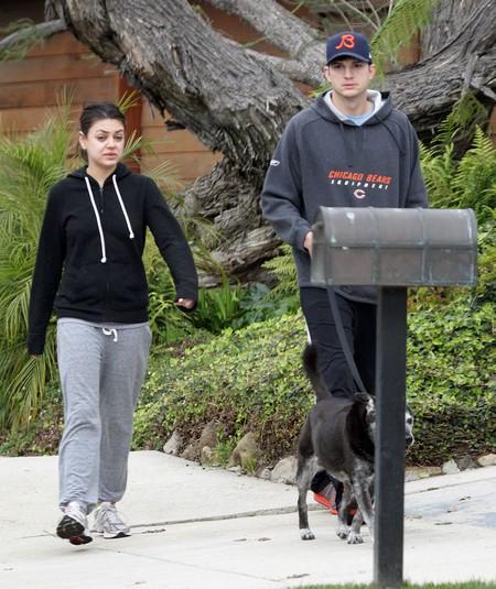 Exclusive... Ashton Kutcher & Mila Kunis Walk The Dog