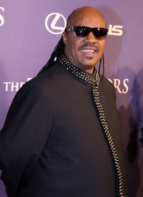 Stevie Wonder Cancels Charity Concert To Raise Money For Israeli Army