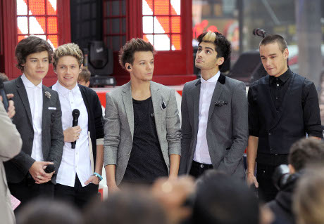 One Direction's Harry Styles, Zayn Malik, Niall Horan, Liam Payne, Louis Tomlinson: Who is Still a Virgin?