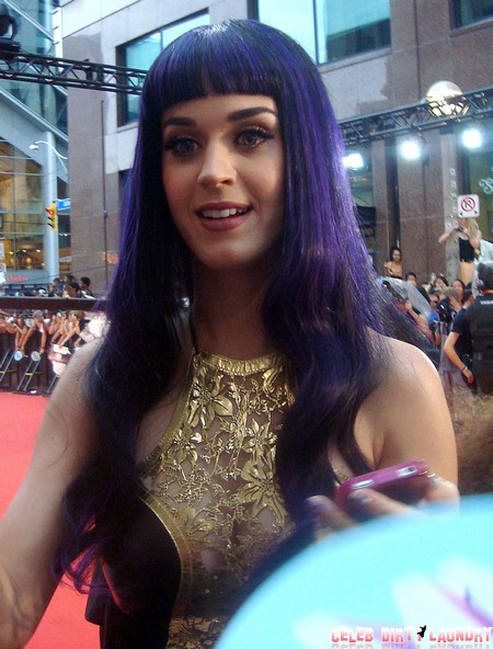 Katy Perry Seeks Another Justin Bieber