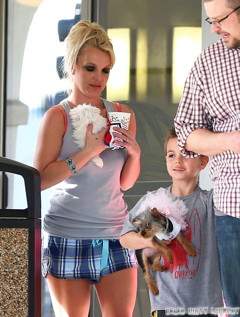 Britney Spears Takes Her Pets To A Dog Hotel