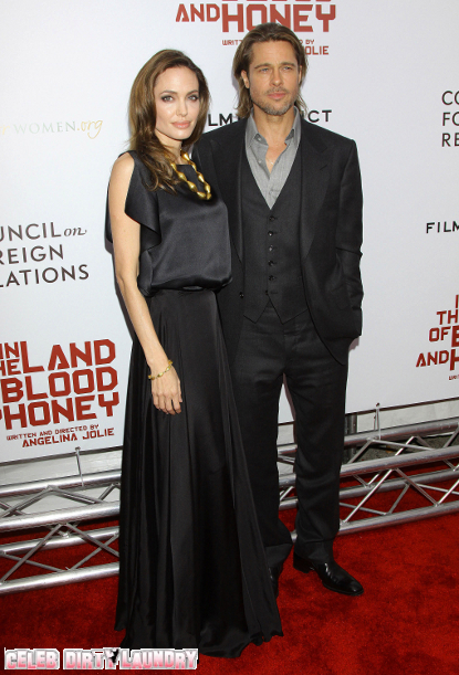 Will Angelina Jolie And Brad Pitt Have More Kids?