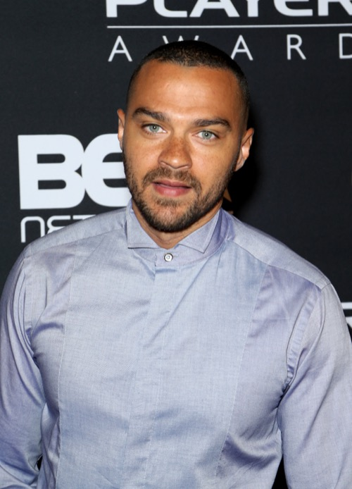 Jesse Williams' Divorce Getting Nastier By The Day: Aryn Drake-Lee Demands Sole Custody of Kids
