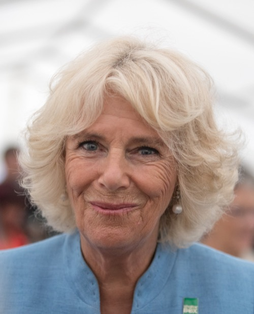 Camilla Parker Bowles Faces Harsh Reality Brits Will Never Accept Queen Camilla