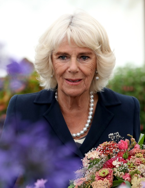 Camilla Parker-Bowles Fit to Be Queen: Better Educated and Prepared Than Princess Diana?