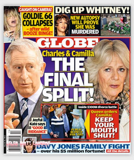 Prince Charles and Camilla Parker Bowles Are Getting A Divorce (Photo)