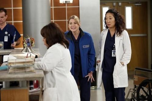 "Grey's Anatomy Season 9 Episode 12 ""Walking on a Dream"" Recap 01/24/13"