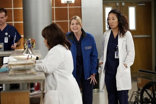 "Grey's Anatomy Season 9 Episode 12 ""Walking on a Dream"" Recap 01/24/13"