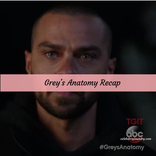 Grays anatomy recap