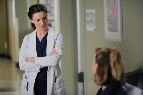 Grey's Anatomy Recap - 'The Me Nobody Knows': Season 12 ...