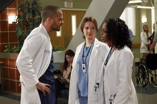 "Grey's Anatomy RECAP 2/7/13: Season 9 Episode 14 ""The Face of Change"""