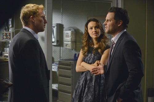 """Grey's Anatomy RECAP 2/27/14: Season 10 Episode 13 """"Take It Back"""""""