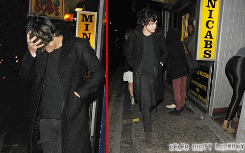 Harry Styles Gay Rumors Pick Up Momentum: Did He Sleep With Nick Grimshaw?
