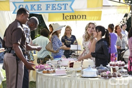 "Hart Of Dixie RECAP 2/3/14: Season 3 Episode 12 ""Should've Been a Cowboy"""