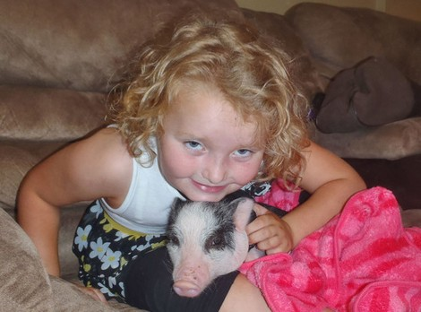 Is Honey Boo Boo's Mother June Shannon Abusing A Little Pig Called Glitzy?