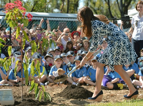 Kate Middleton Bare Bum Pic International Scandal - Naked Butt Photo Published by Bild