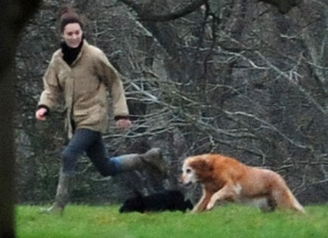 Pippa Middleton And Kate Middleton's Dog More Fascinating Than Boring Kate Middleton? 0130