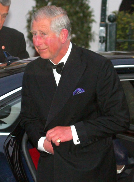 Prince Charles' King Roles Increasing - Is Queen Elizabeth Sicker Than We Thought? 0508