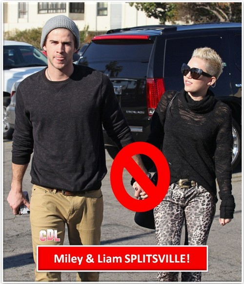 Miley Cyrus and Liam Hemsworth Have Split Up