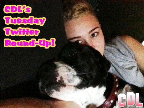 "CDL's Tuesday Twitter Round-Up: Miley Cyrus Loves her Mary Jane, Rob Kardashian Addresses ""Rita Whora"" Kerfuffle!"