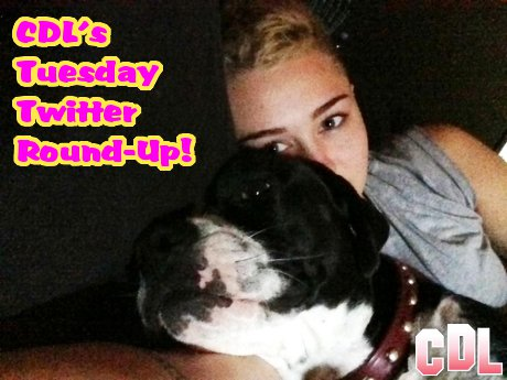 "CDL's Tuesday Twitter Round-Up: Miley Cyrus Loves her Mary Jane, Rob Kardashian Addresses ""Rita Whora"" Kerfuffle!"