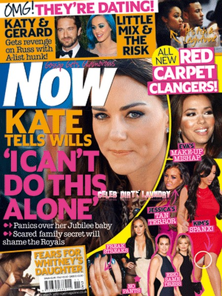 Kate Middleton's Pregnancy Woes - She Explodes At Prince William: 'I Can't Do This Alone' (Photo)