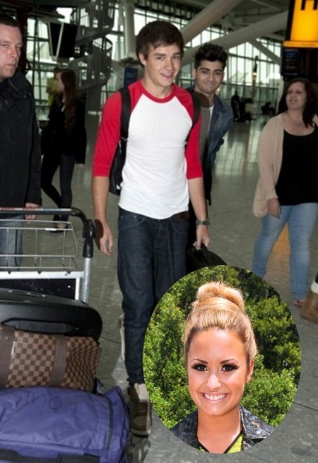 One Direction's Niall Horan Moving to US for Demi Lovato