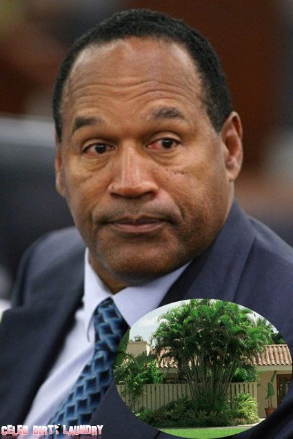 O.J. Simpson's Ex-Girlfriend Busted For Drugs And Blames Him
