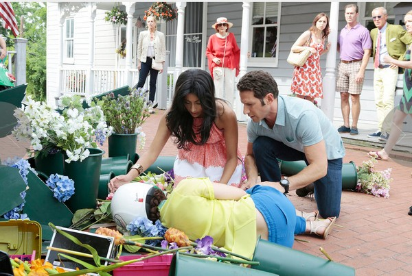 "Royal Pains Recap 8/5/14: Season 6 Episode 9 ""I Did Not See That Coming"""
