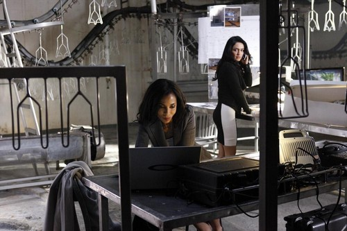 """Scandal RECAP 4/10/14: Season 3 Episode 17 """"Flesh and Blood"""""""