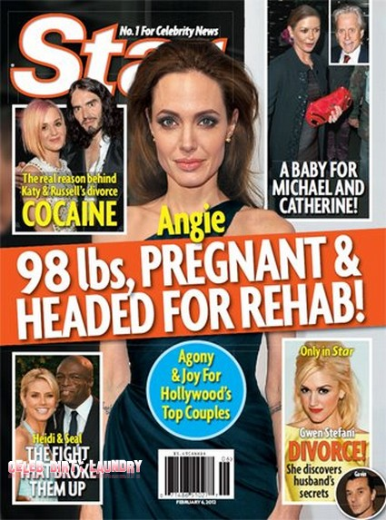 Angelina Jolie Is Pregnant, Weighs 98 Pounds, And Is Headed For Rehab (Photo)